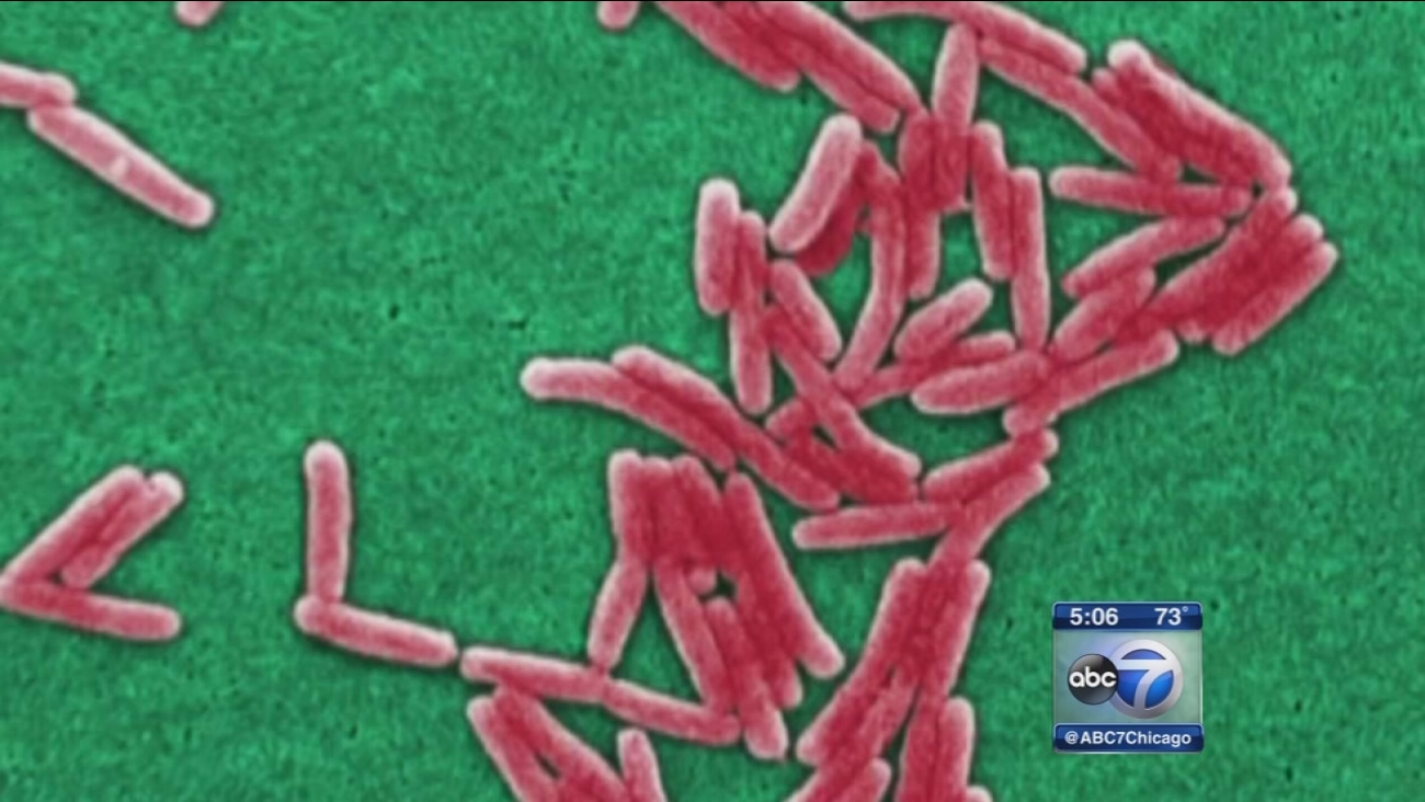 Schools close due to legionella bacteria