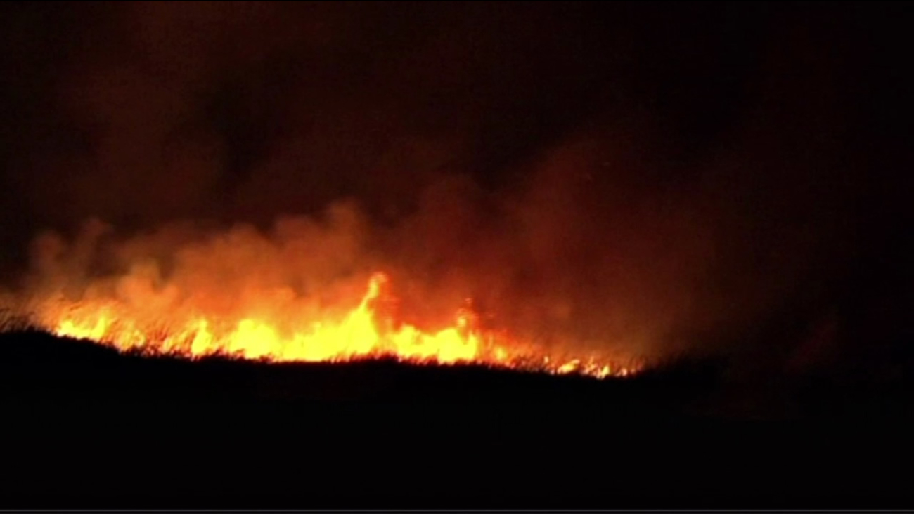 A vegetation fire burned about 40 acres in Bay Point early Saturday morning