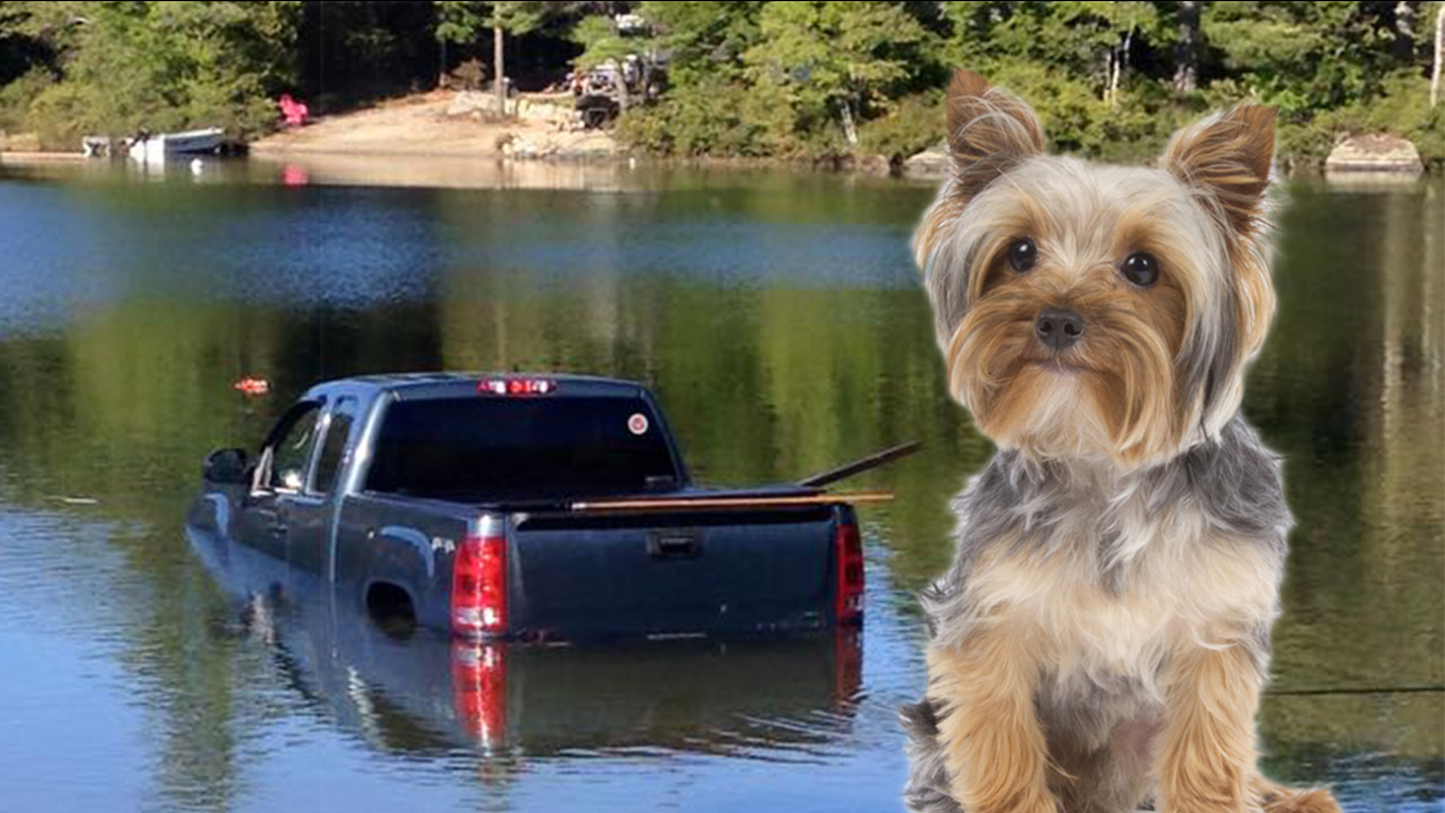 truck in the lake