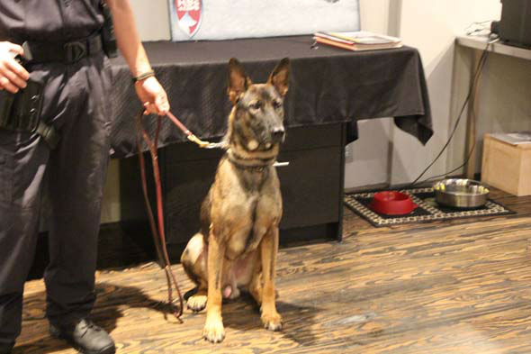 """<div class=""""meta image-caption""""><div class=""""origin-logo origin-image none""""><span>none</span></div><span class=""""caption-text"""">A Houston non-profit group is helping keep officers safe by providing them with a K-9 partner.</span></div>"""