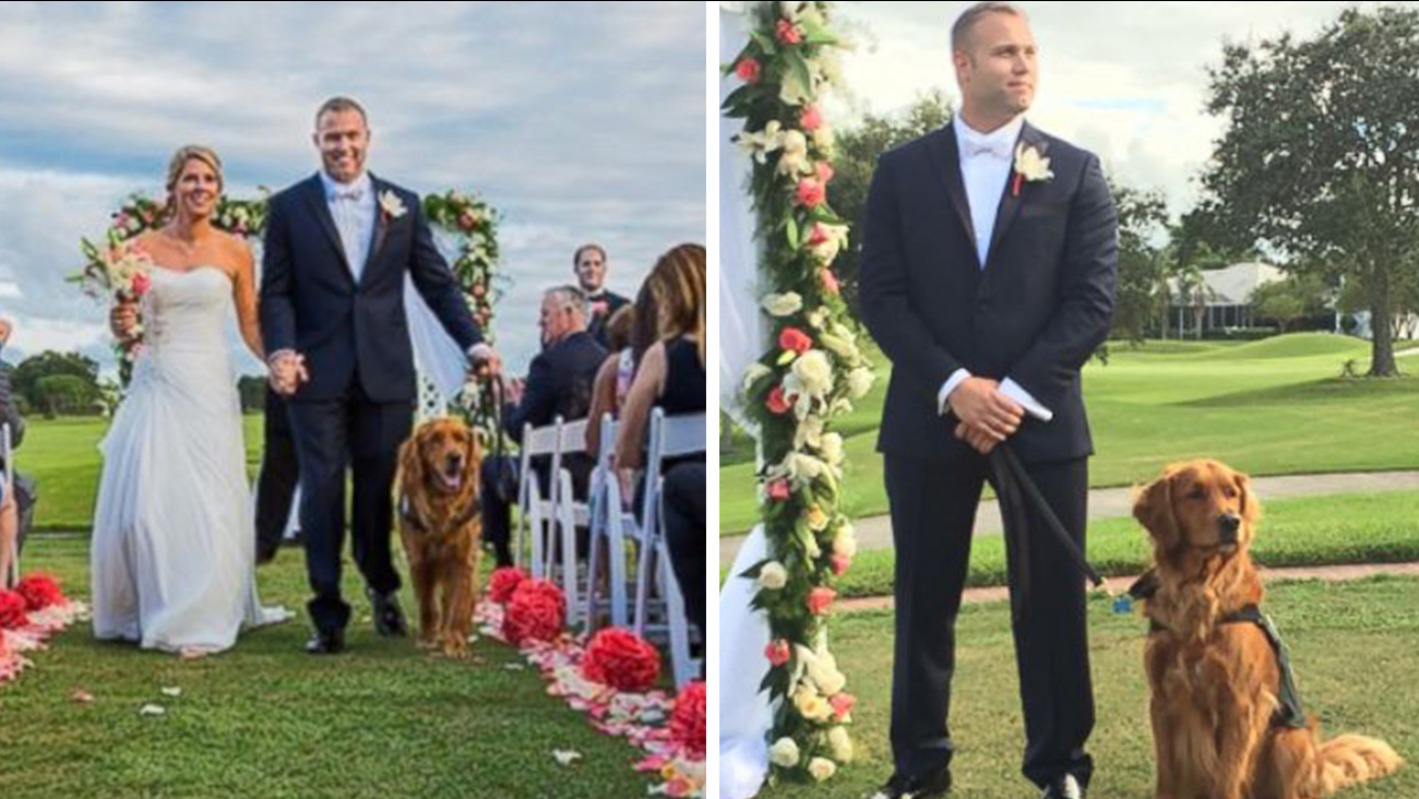Veteran S Therapy Dog Serves As Best Man At His Wedding Abc7 San