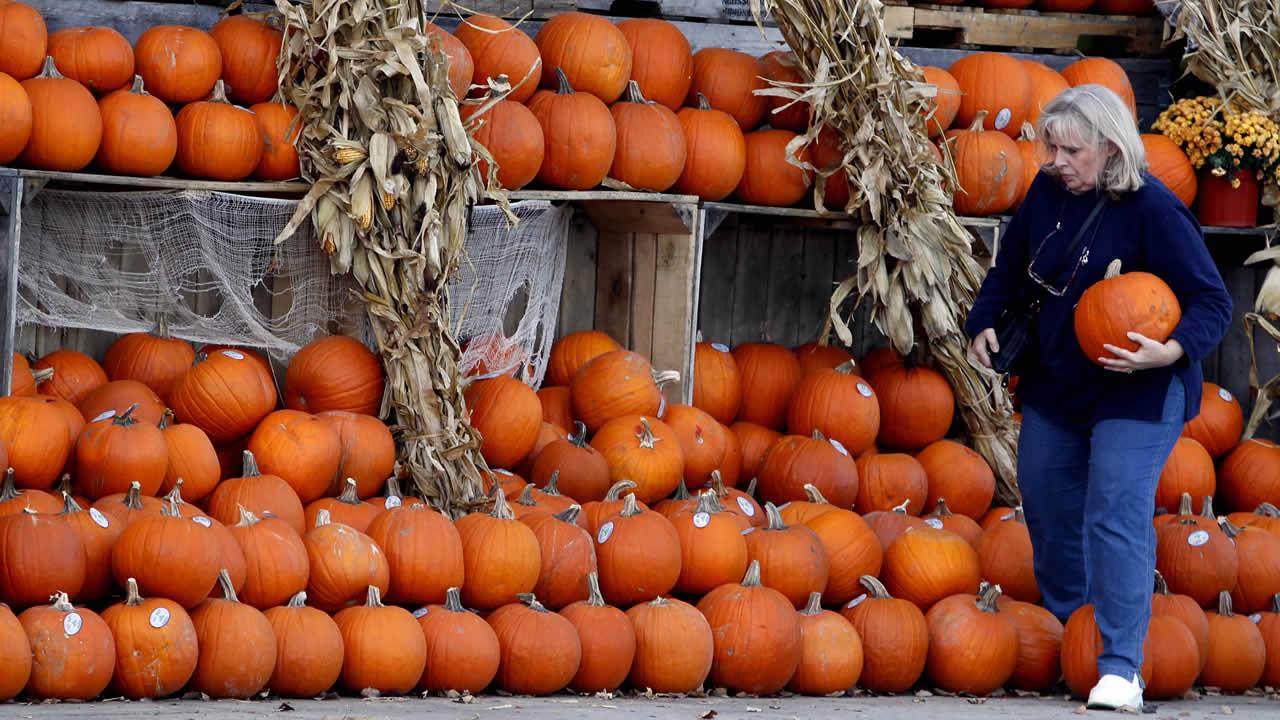 A shopper shops pumpkins at Fresh Farms in Chicago.