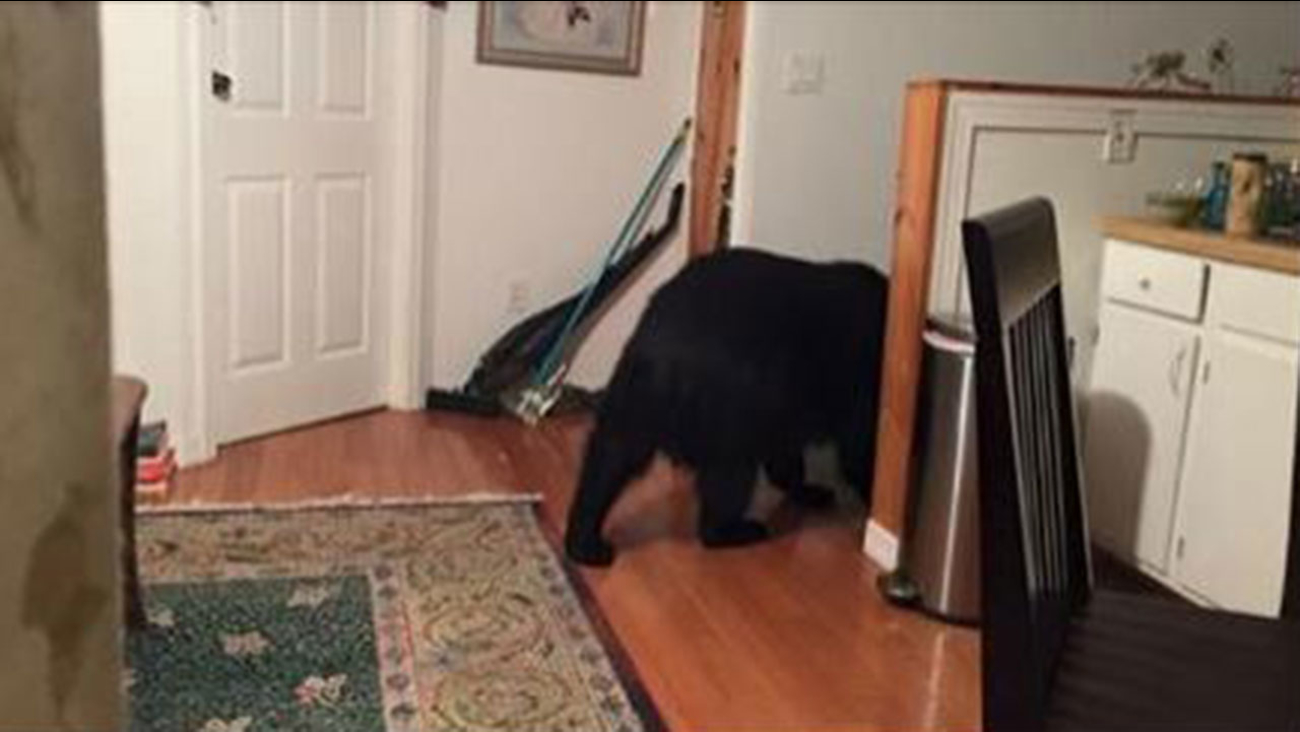 An Asheville woman says a bear opened an unlocked door to her home and went inside.