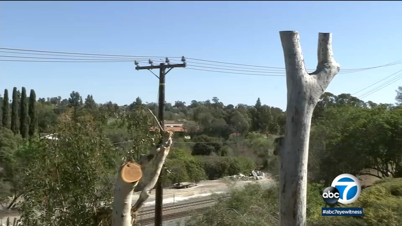 After SoCal Edison trims trees along power lines in Mission Viejo, residents call it excessive