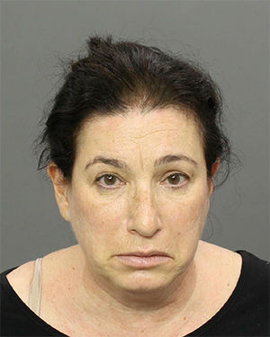 "<div class=""meta image-caption""><div class=""origin-logo origin-image none""><span>none</span></div><span class=""caption-text"">Pictured: Rebecca Kaplan of Elkins Park, Pa., had been charged with resisting arrest and failure to appear in court.</span></div>"