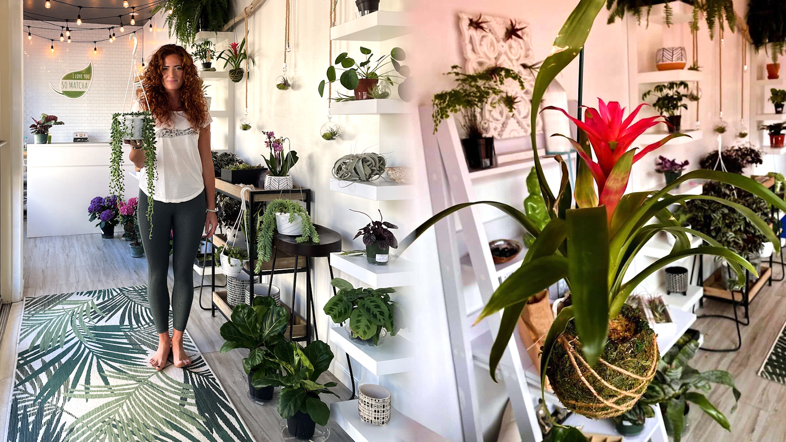 The North Fork Plant Company hot yoga studio houses wide variety of houseplants that you can buy