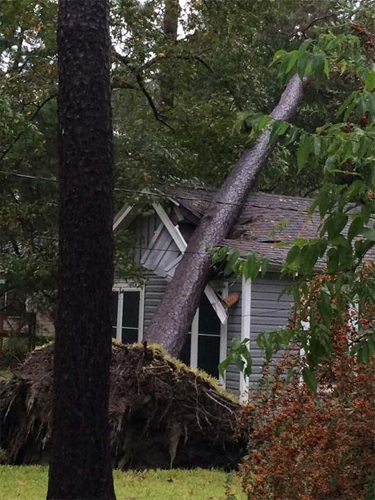 "<div class=""meta image-caption""><div class=""origin-logo origin-image none""><span>none</span></div><span class=""caption-text"">A tree fell on a home in Dickinson during heavy rains on Saturday, October 24, 2015. (Ashley Yell)</span></div>"