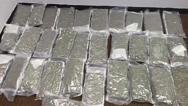 A New Jersey woman received a surprise package with $100,000 worth of marijuana inside.