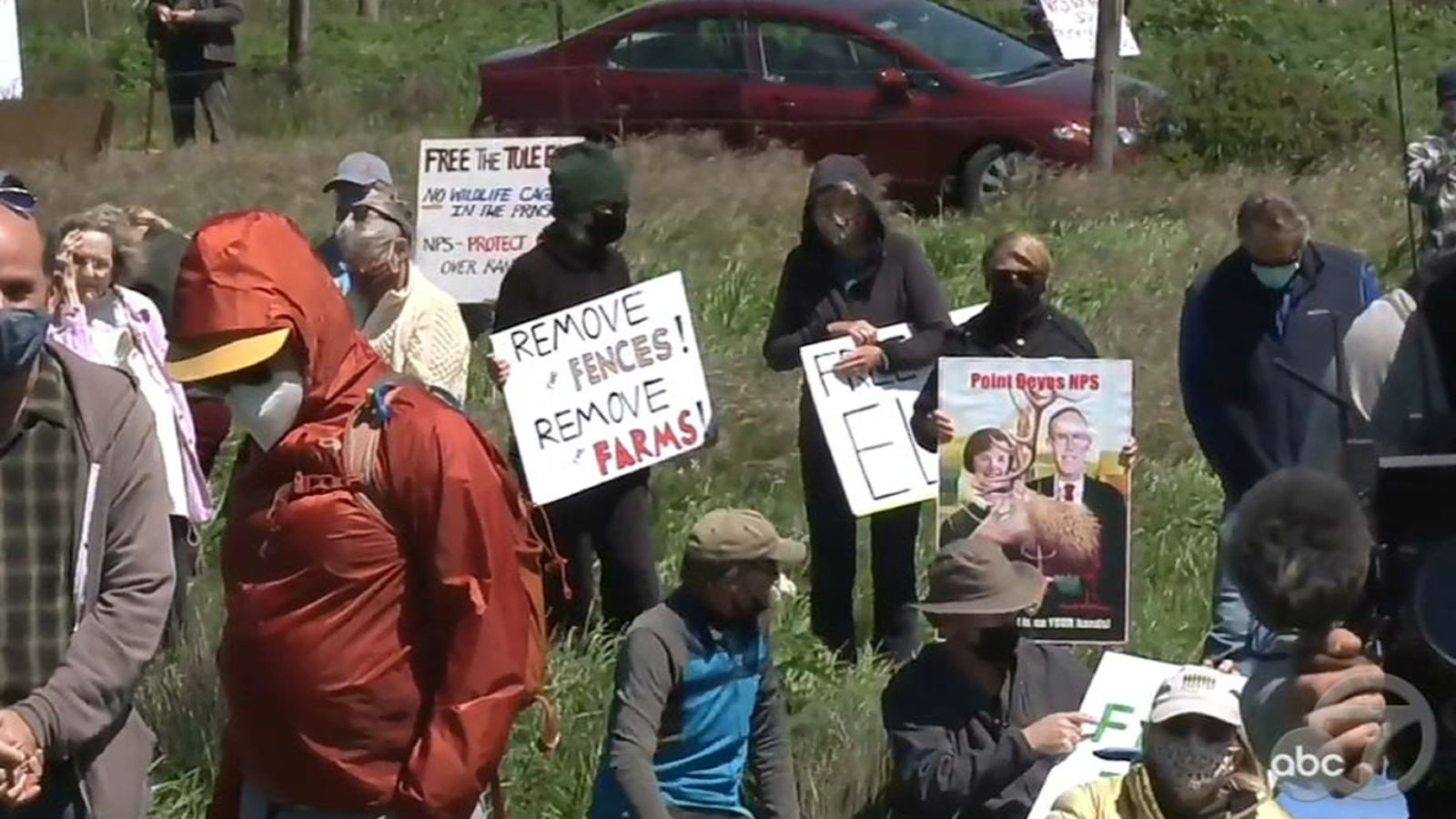 Protesters demand removal of fence after 100+ tule elk die in Point Reyes
