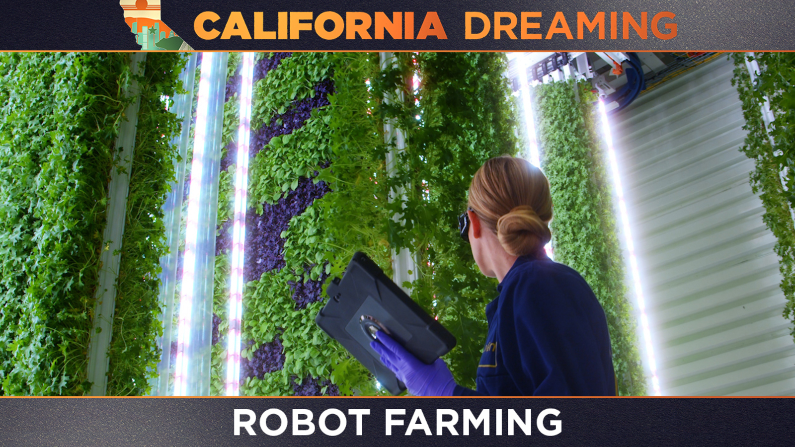California Dreaming: Artificial intelligence and robots are helping farmers prepare for climate change - KABC-TV