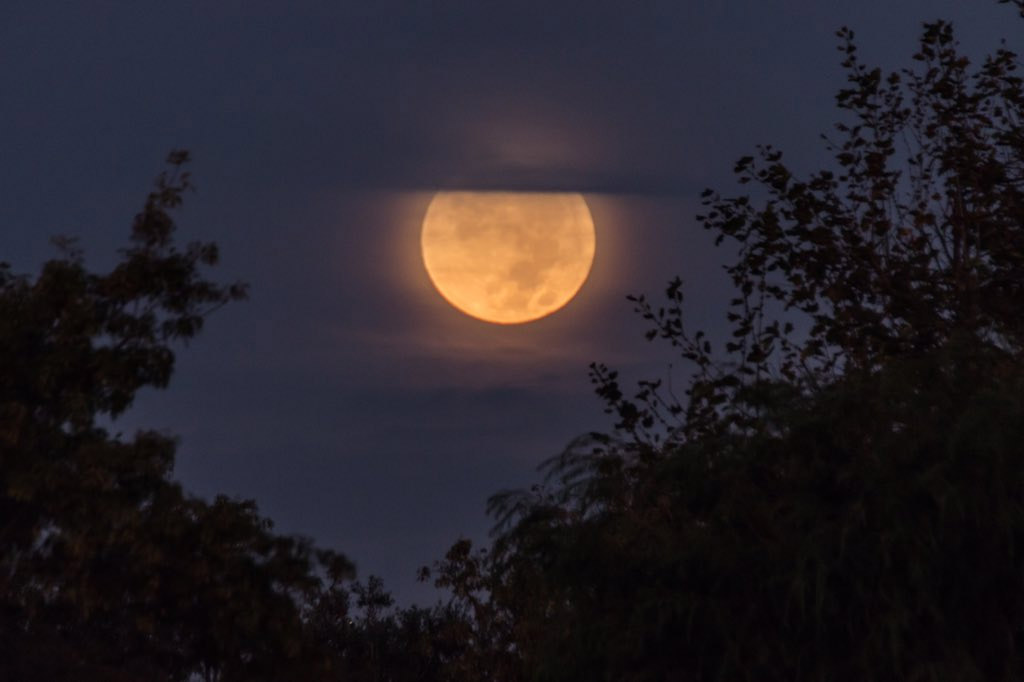 """<div class=""""meta image-caption""""><div class=""""origin-logo origin-image none""""><span>none</span></div><span class=""""caption-text"""">Greg Sabo took a photo of the last supermoon of the year peeking through clouds on Tuesday, Oct. 27, 2015. (twitter.com/@saboshoots)</span></div>"""