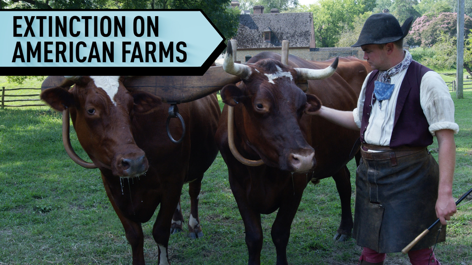 Fighting Extinction on American Farms