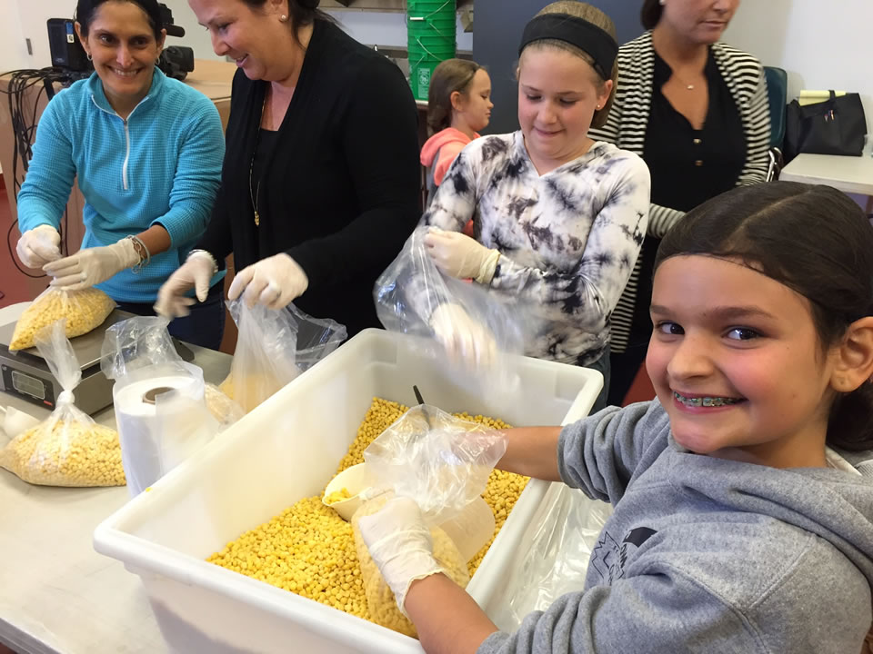 "<div class=""meta image-caption""><div class=""origin-logo origin-image none""><span>none</span></div><span class=""caption-text"">Volunteers with Sonoma Country Day School are seen at Redwood Empire Food Bank in Santa Rosa, Calif. on Monday, November 2, 2015. (KGO-TV)</span></div>"
