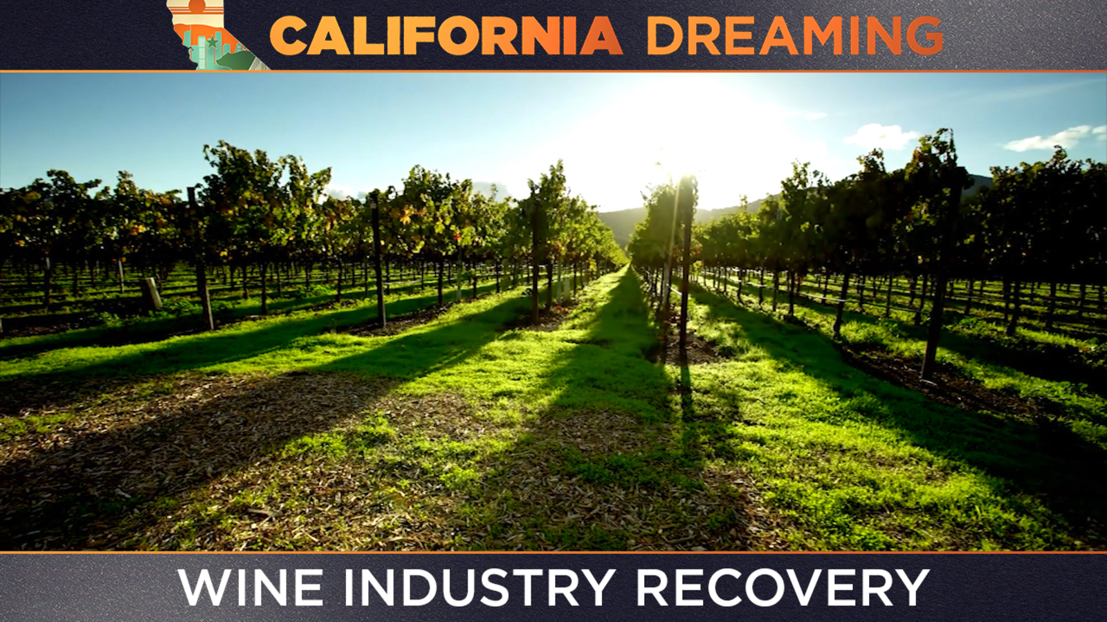 California Dreaming: Golden State's wine industry recovering following pandemic, wildfires