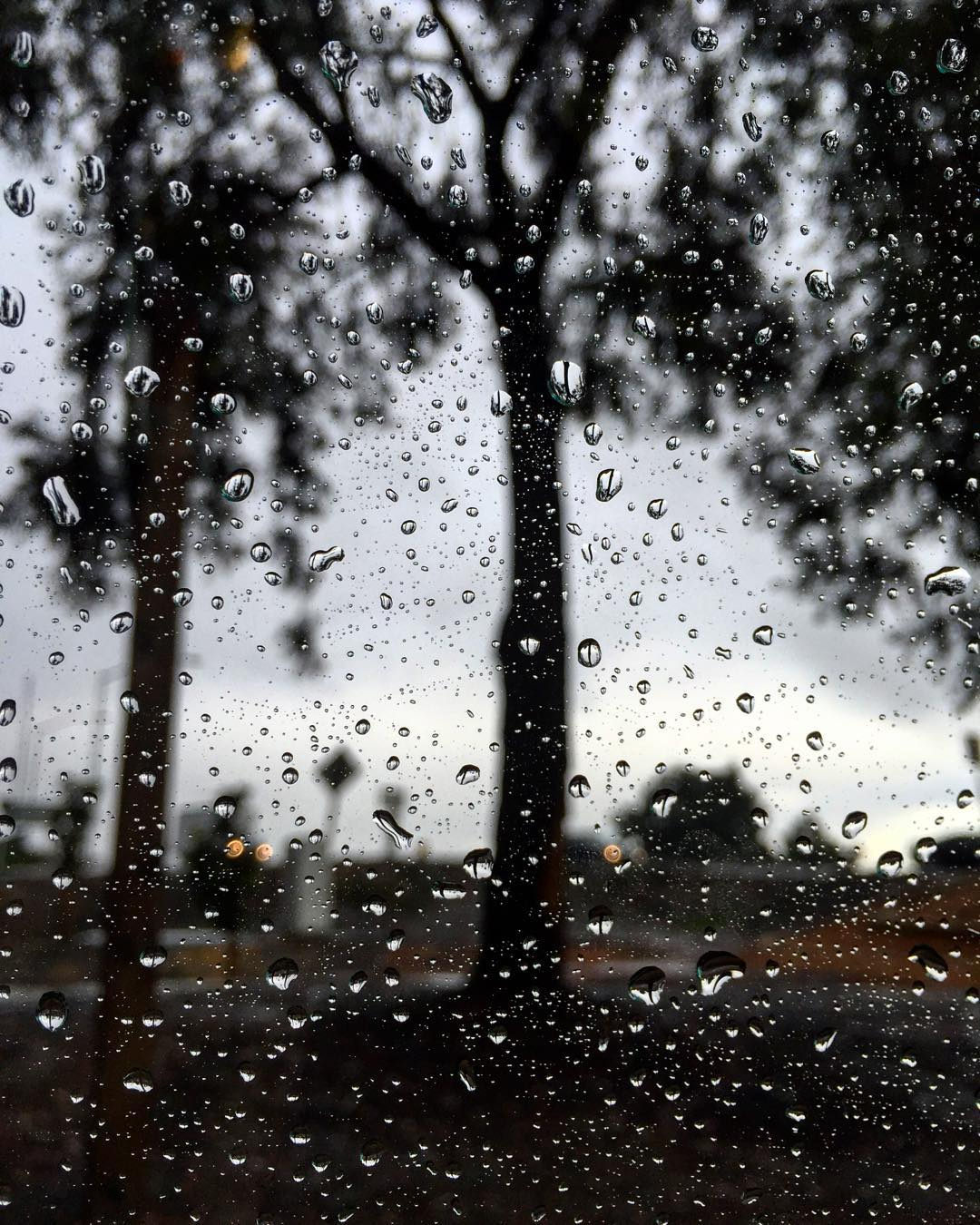 """<div class=""""meta image-caption""""><div class=""""origin-logo origin-image none""""><span>none</span></div><span class=""""caption-text"""">A storm moved through the Bay Area on Monday, November 9, 2015, bringing waves of thunderstorms, lightning and showers. Share your weather pics on social media using #abc7now. (Photo submitted to KGO-TV by btophotography/Instagram)</span></div>"""