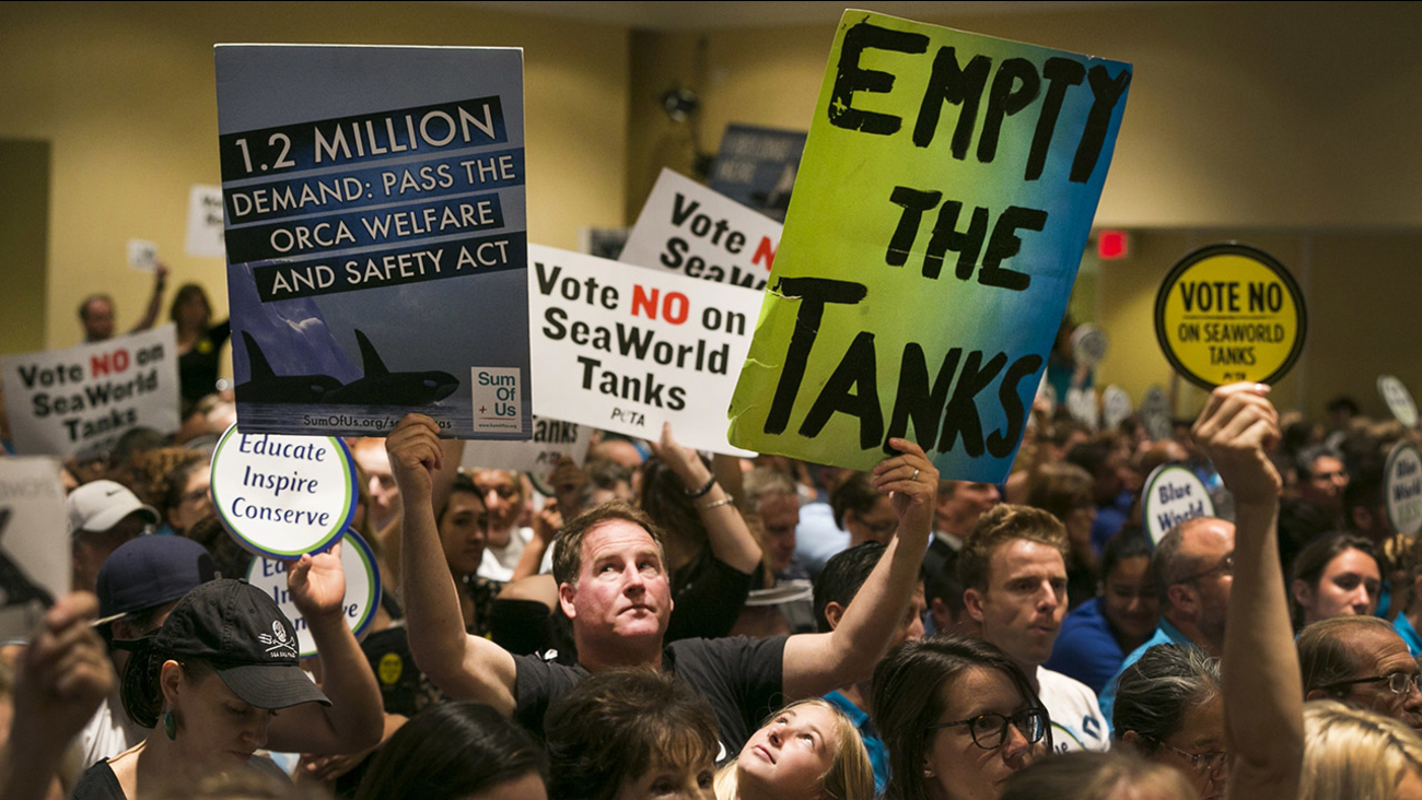 This Oct. 8, 2015, file photo, an animal rights activist holds up signs as opponents and supporters fill the room during a California Coastal Commission meeting