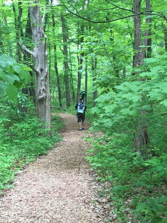 <div class='meta'><div class='origin-logo' data-origin='none'></div><span class='caption-text' data-credit='WPVI Photo'>Google Trekking at Bowman's Hill Wildflower Preserve</span></div>