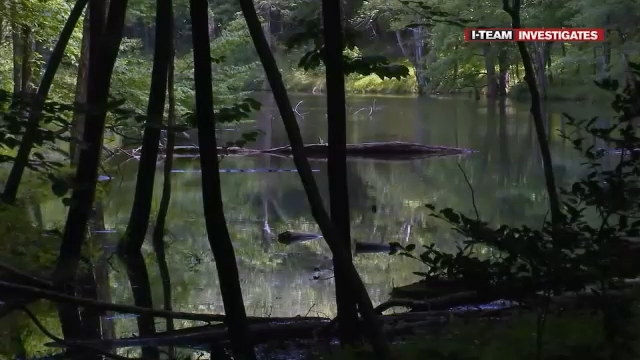 abc11.com - Samantha Kummerer - Future of Umstead State Park uncertain: Advocates question mining permit change