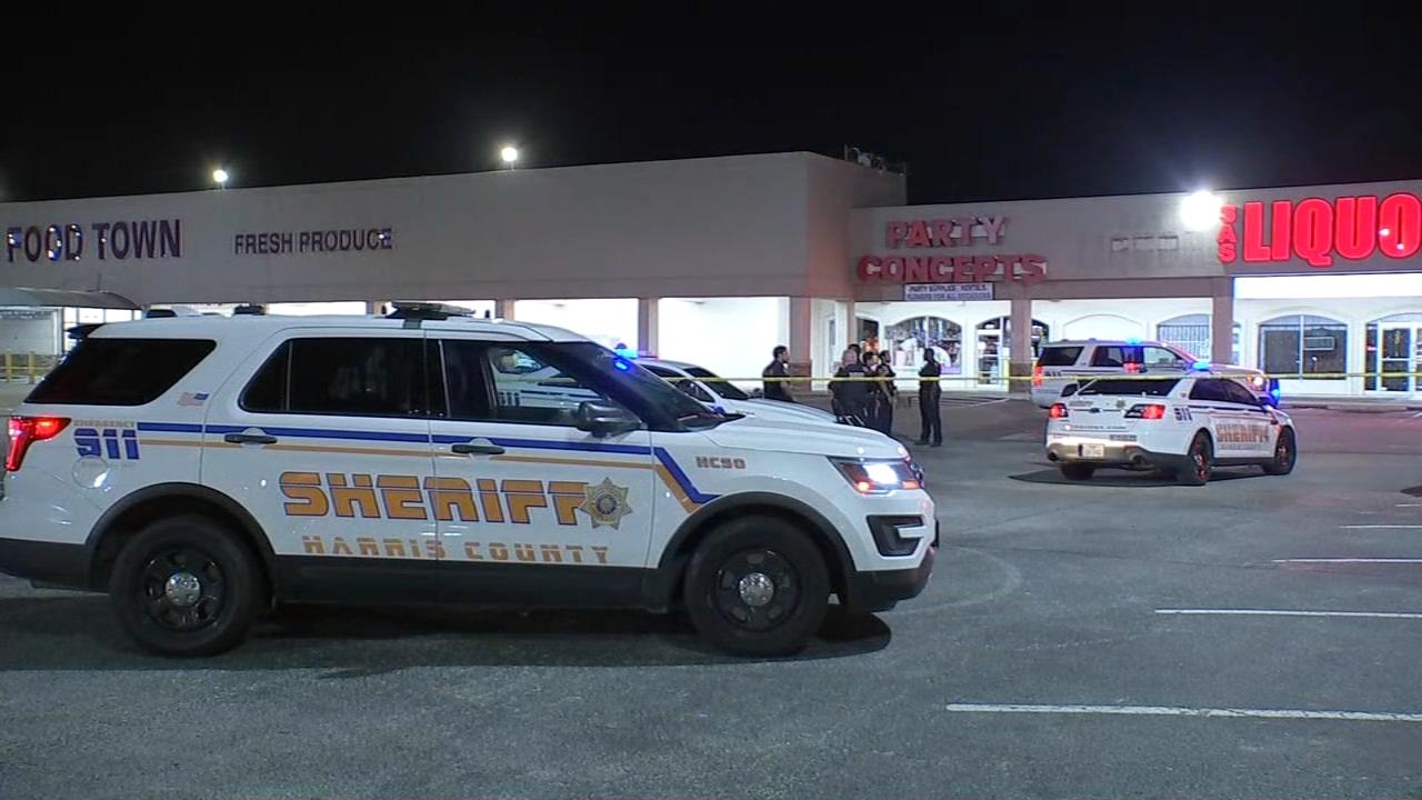 遛狗的妇女在休斯顿哈里斯郡北部商店外开枪打死了无家可归的妇女(视频)