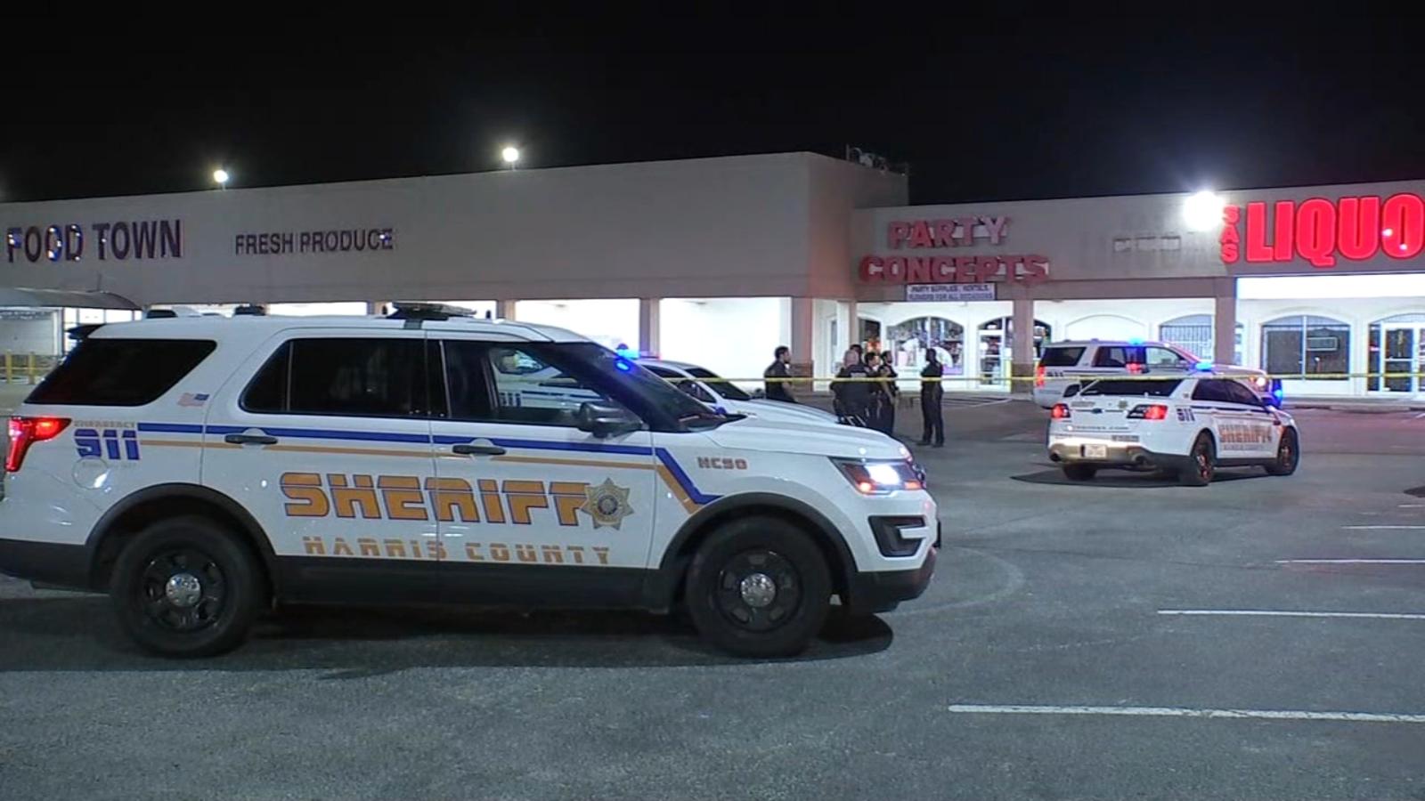 Woman walking dog shoots and kills homeless woman outside N Harris Co. store, deputies say
