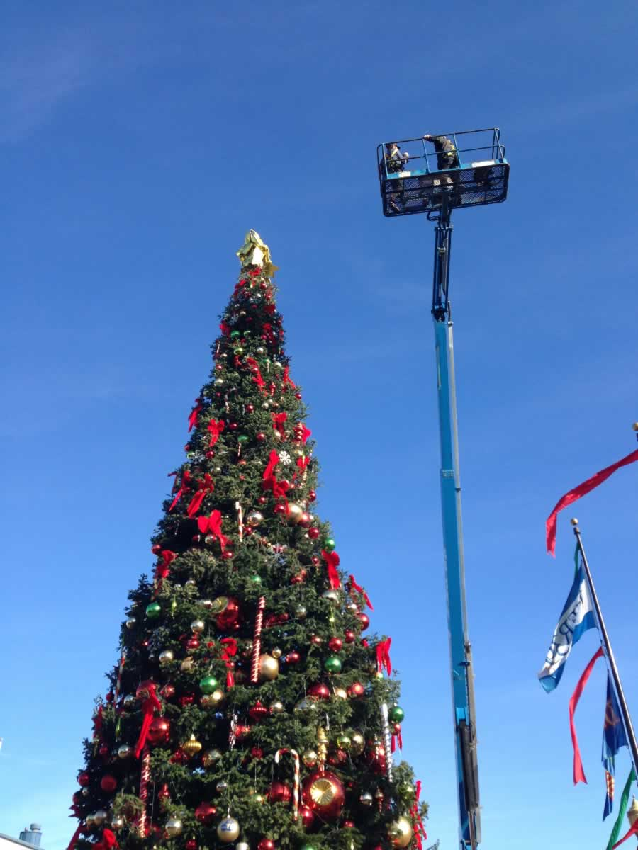 "<div class=""meta image-caption""><div class=""origin-logo origin-image none""><span>none</span></div><span class=""caption-text"">A 60-foot-tall tree stands at San Francisco's Pier 39 in San Francisco on Saturday, November 21, 2015. (Pier 39)</span></div>"