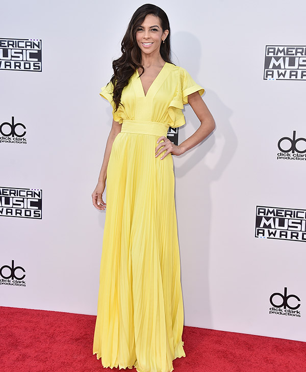<div class='meta'><div class='origin-logo' data-origin='AP'></div><span class='caption-text' data-credit='Jordan Strauss/Invision/AP'>Terri Seymour arrives at the American Music Awards at the Microsoft Theater on Sunday, Nov. 22, 2015, in Los Angeles.</span></div>