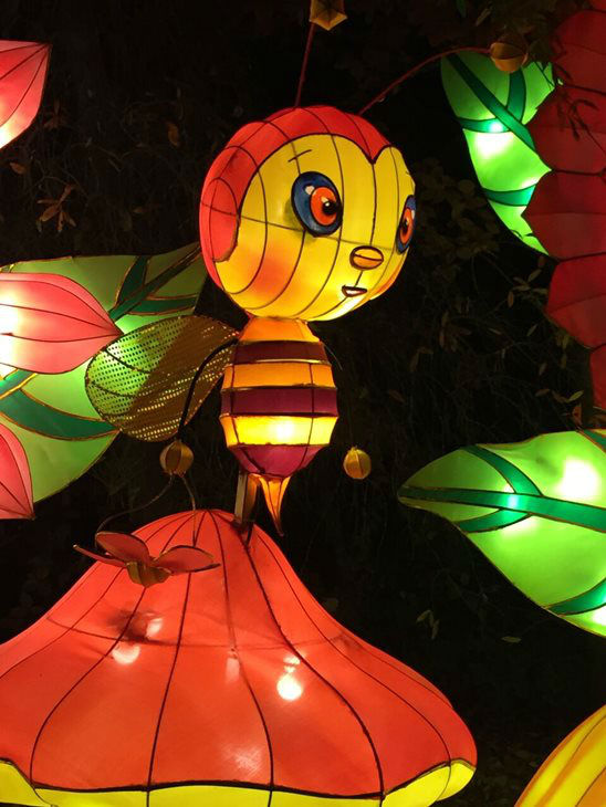 "<div class=""meta image-caption""><div class=""origin-logo origin-image none""><span>none</span></div><span class=""caption-text"">Photos from the 2015 NC Chinese Lantern Festival (WTVD Photo)</span></div>"