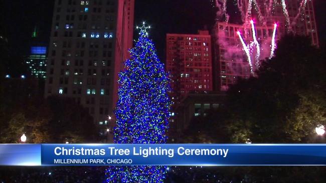 official tree sparkles at new millennium park location