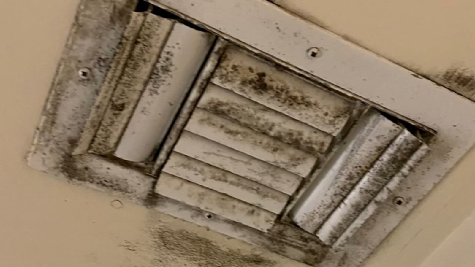 Fort Bragg soldier returned from Afghanistan to find barracks covered in mold, father says