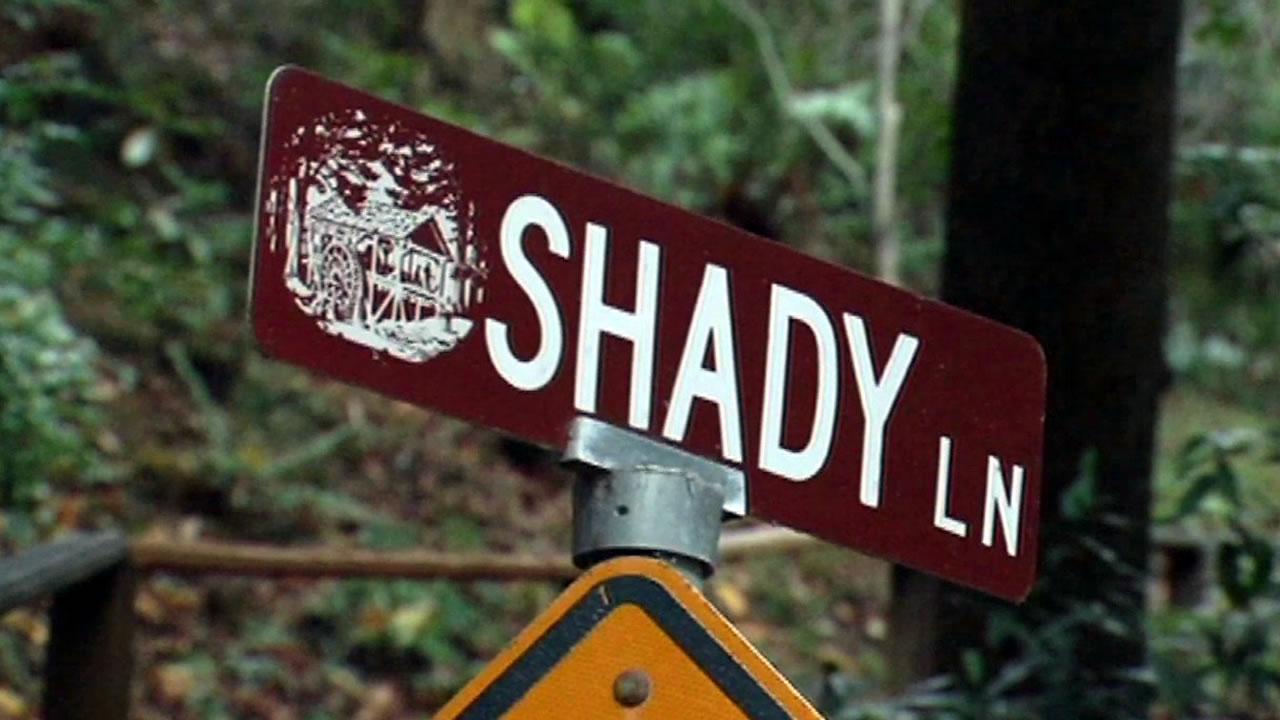 Shady Lane street sign