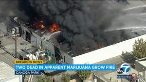 Canoga公园的大麻种植作业发生爆炸和火灾,3名男子被严重烧伤