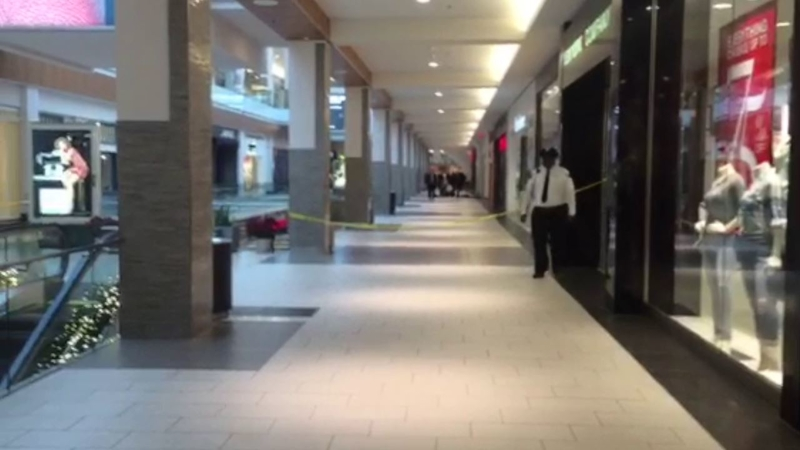 People's reactions to shooting at Roosevelt Field Mall