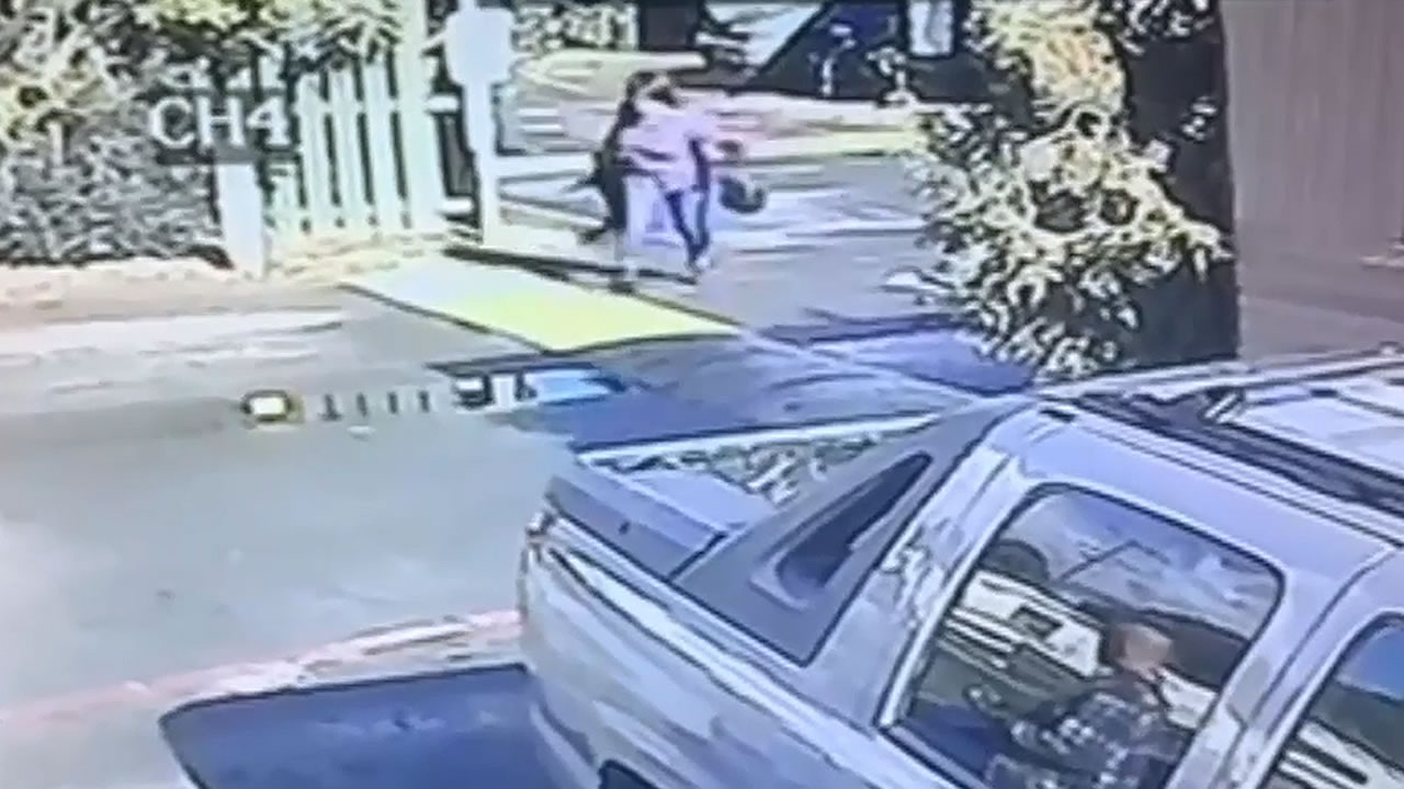 woman seen throwing a pug to the ground