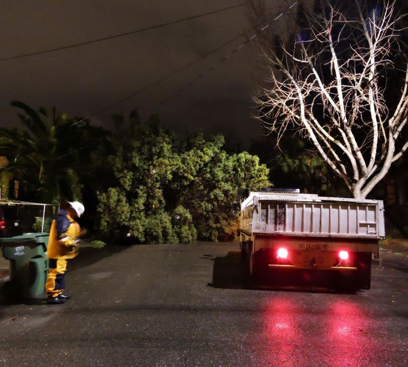 "<div class=""meta image-caption""><div class=""origin-logo origin-image none""><span>none</span></div><span class=""caption-text"">Crews prepare to remove a downed tree that crushed a car in Alameda, Calif. on Wednesday, January 6, 2016. (Photo submitted to KGO-TV via uReport)</span></div>"