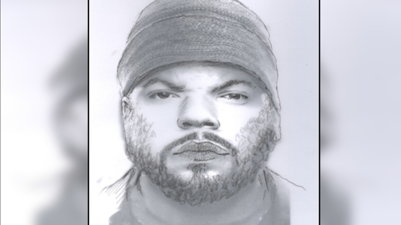 Suspect sketch released after woman, 75, shot in face