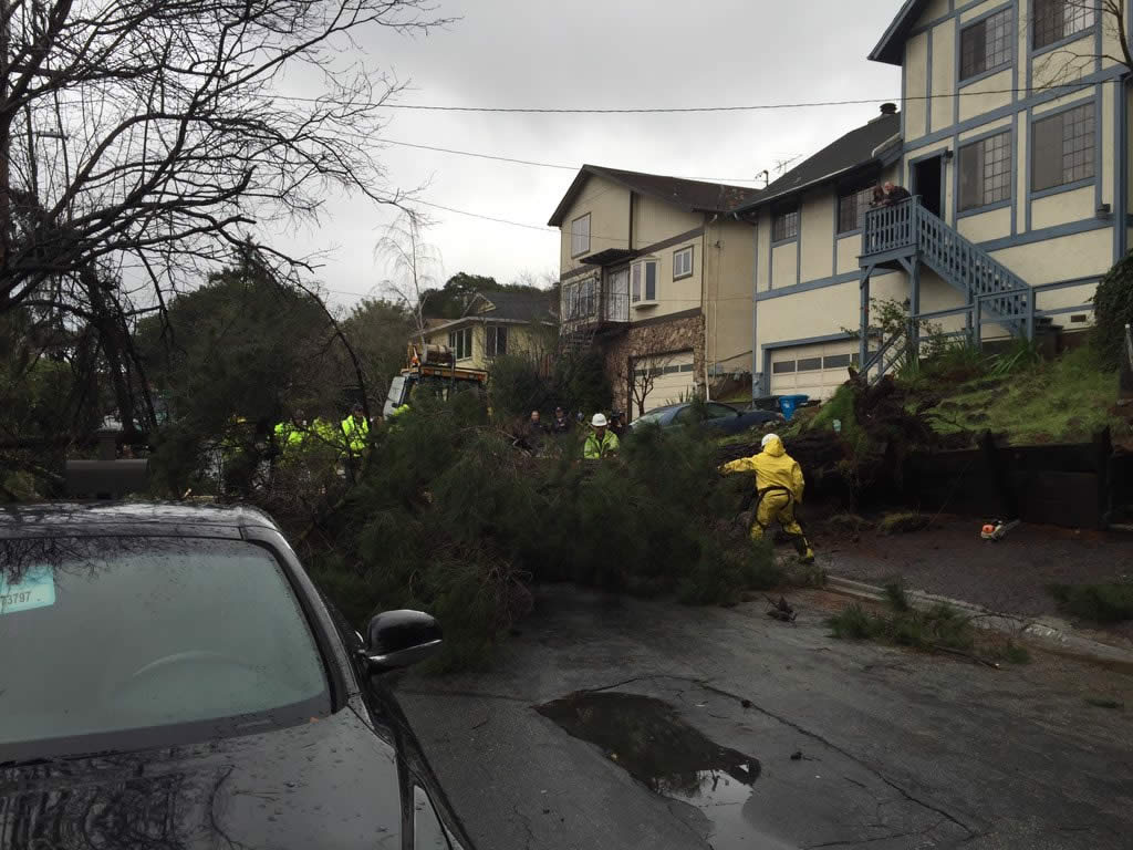 "<div class=""meta image-caption""><div class=""origin-logo origin-image none""><span>none</span></div><span class=""caption-text"">Crews work to clear trees knocked down by a powerful storm in Belmont, Calif., on Tuesday, January 19, 2016. (KGO-TV)</span></div>"