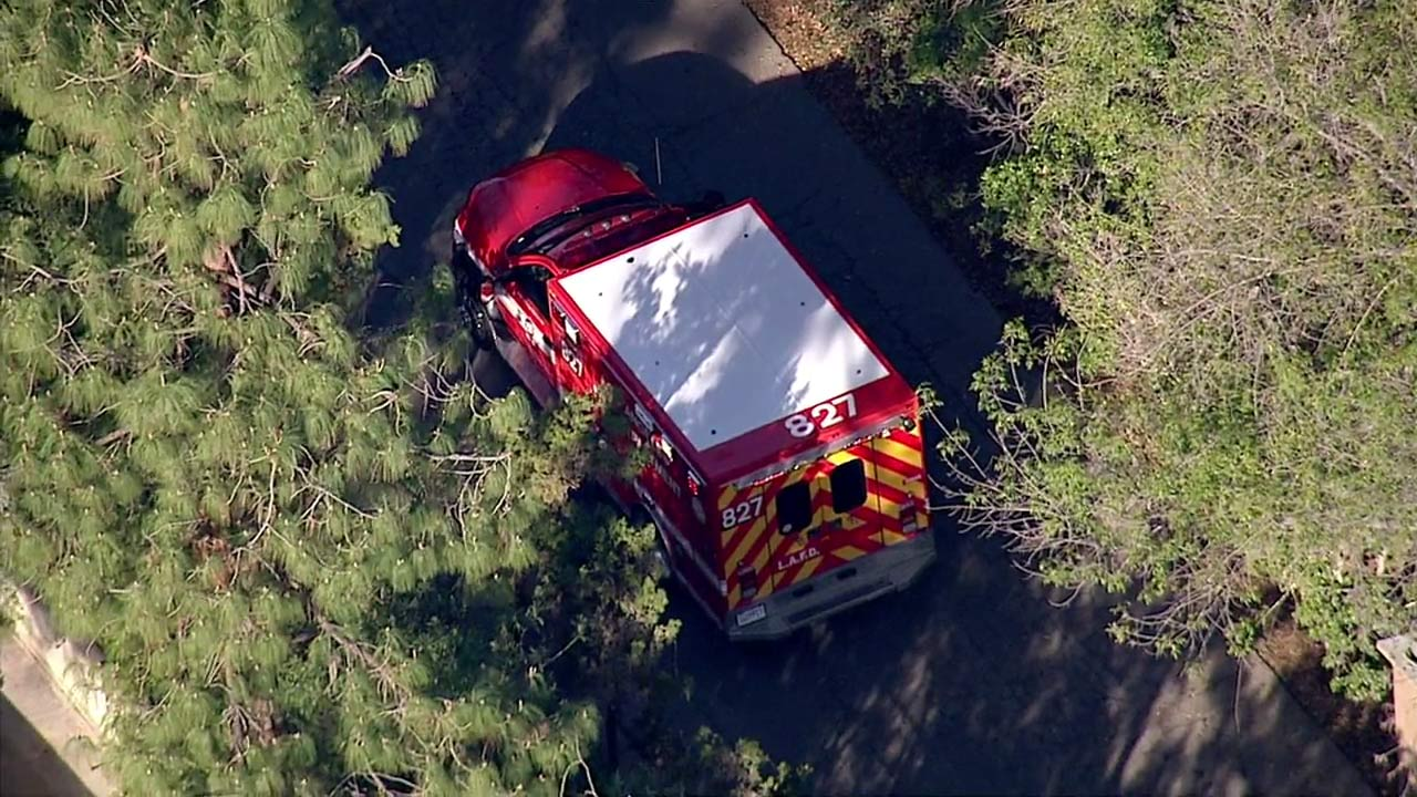 An emergency vehicle is parked at the Los Angeles Zoo following a rescue of a zoo employee who fell into the gorilla enclosure on Thursday, Jan. 21, 2016.