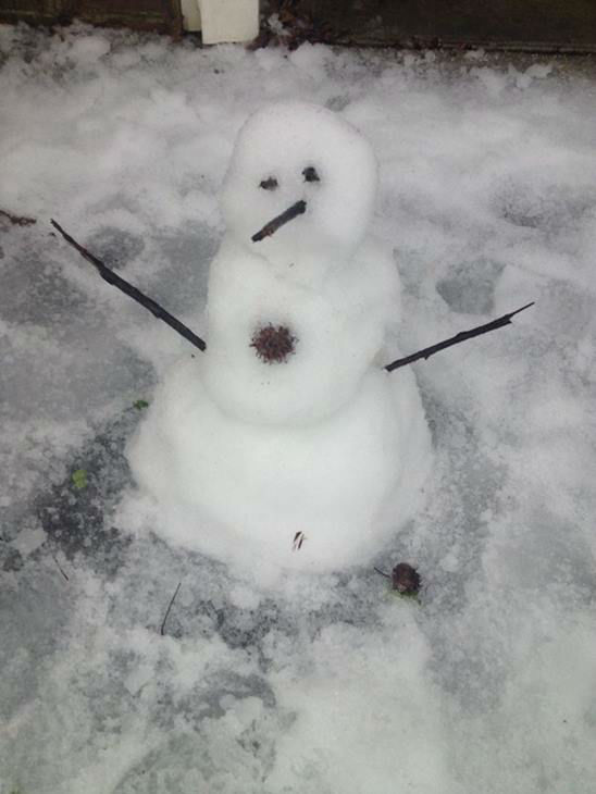 "<div class=""meta image-caption""><div class=""origin-logo origin-image none""><span>none</span></div><span class=""caption-text"">Meet Icy Olaf in the Triangle.</span></div>"