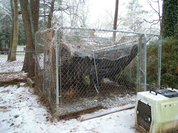 "<div class=""meta image-caption""><div class=""origin-logo origin-image none""><span>none</span></div><span class=""caption-text"">South of Raleigh near the West Lakes schools. The branches are heavy with ice and a large branch falls on a chicken coop.</span></div>"