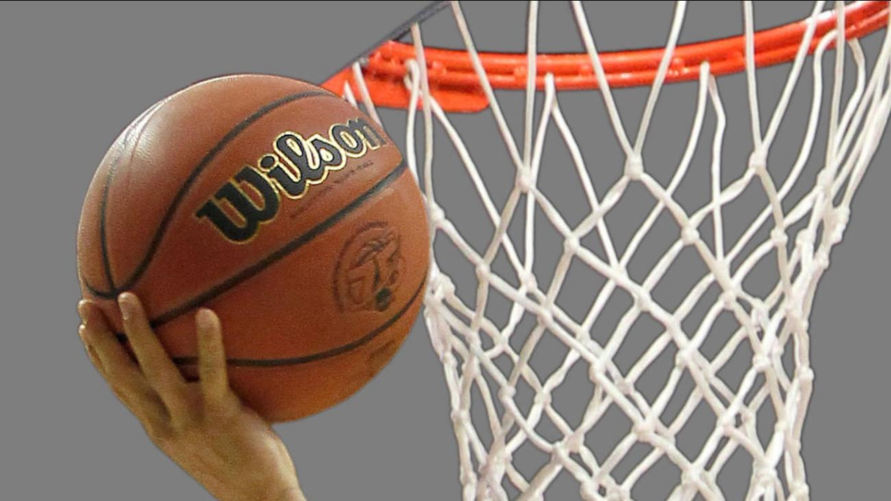 basketball hoop net generic