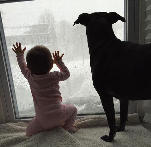"<div class=""meta image-caption""><div class=""origin-logo origin-image none""><span>none</span></div><span class=""caption-text"">Emma and Raven the dog enjoy the snow view. (Action News Viewer)</span></div>"