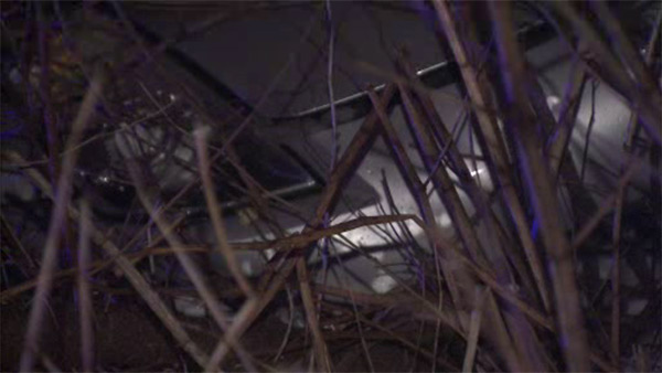 Driver crashes vehicle into bushes off I-76 ramp in Wynnefield