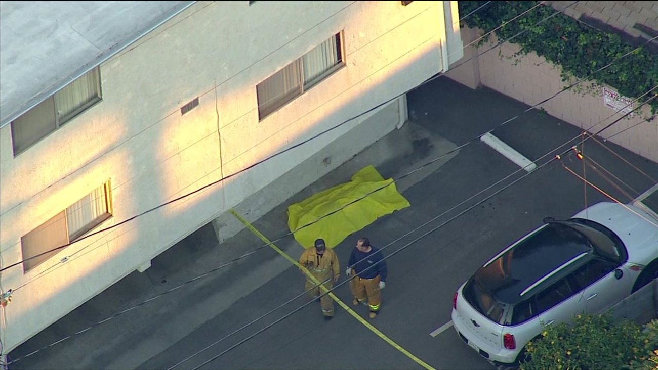 A body was found in a parking lot next to a Del Rey apartment on Tuesday, Feb. 2, 2016.