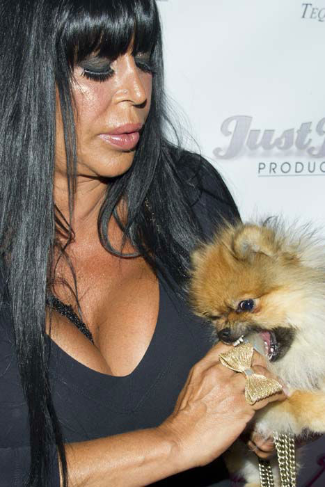 "<div class=""meta image-caption""><div class=""origin-logo origin-image none""><span>none</span></div><span class=""caption-text"">Angela Raiola, better know as Big Ang, and her dog Little Louis arrive to the premiere of her VH1 reality show (AP Photo/ Charles Sykes)</span></div>"