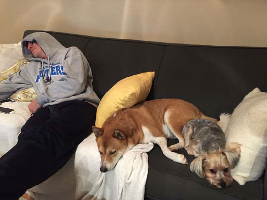 "<div class=""meta image-caption""><div class=""origin-logo origin-image none""><span>none</span></div><span class=""caption-text"">Chip and Mozart catching some zzz's with Jake</span></div>"