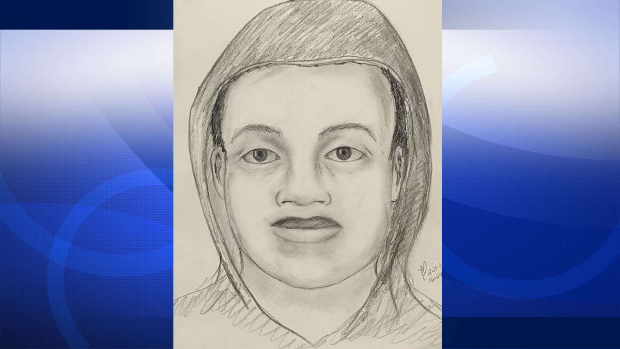 Police released this sketch of one of the suspects in a series of armed robberies in the Stoneridge Mall parking lot in Pleasanton, Calif.