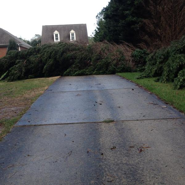 "<div class=""meta image-caption""><div class=""origin-logo origin-image none""><span>none</span></div><span class=""caption-text"">3 trees down in Raleigh (ABC11 Eyewitness/FlinchumLance)</span></div>"