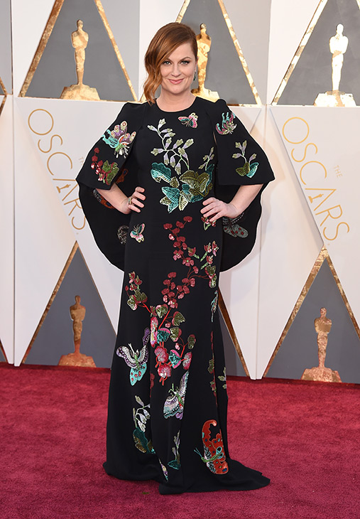 "<div class=""meta image-caption""><div class=""origin-logo origin-image ap""><span>AP</span></div><span class=""caption-text"">Amy Poehler arrives at the Oscars on Sunday, Feb. 28, 2016, at the Dolby Theatre in Los Angeles. (Jordan Strauss/Invision/AP)</span></div>"