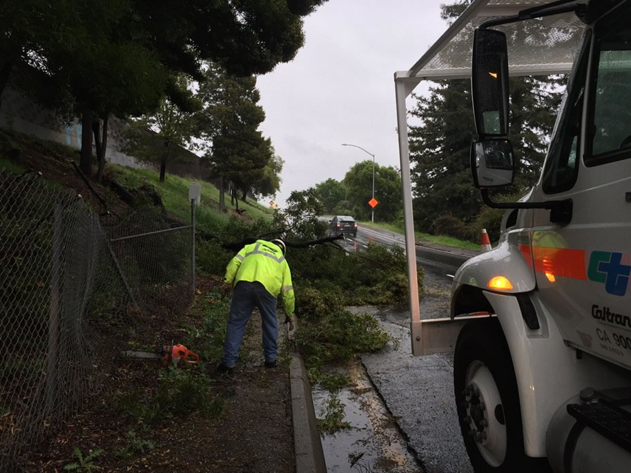 "<div class=""meta image-caption""><div class=""origin-logo origin-image none""><span>none</span></div><span class=""caption-text"">Crews work to remove a fallen tree in Oakland, Calif., on Saturday, March 5, 2016. (KGO-TV)</span></div>"