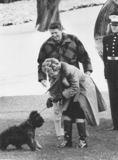 "<div class=""meta image-caption""><div class=""origin-logo origin-image ap""><span>AP</span></div><span class=""caption-text"">First Lady Nancy Reagan with the president looking on, tugs on the leash of the Reagan's new dog ""Lucky"",  in 1985.</span></div>"